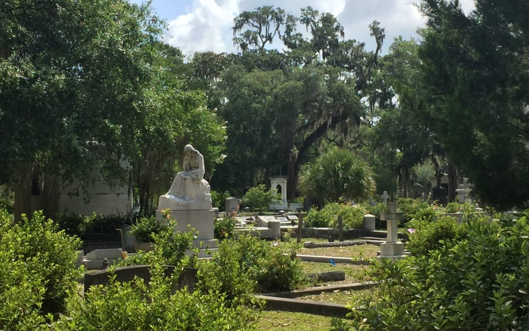 A Walk in the Cemetery: Thoughts for Co-Parents